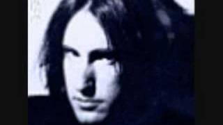 Nine Inch Nails -Perfect Drug