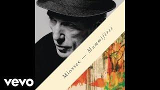 Miossec - Papa (audio)