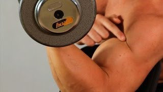 How to Do a Preacher Curl   Arm Workout
