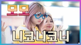 Twice 모모 니코니코니 애교 (feat. 유또막...)