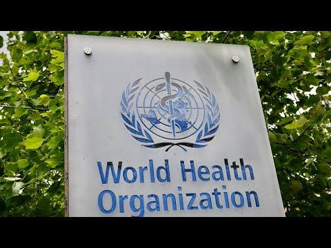 World Health Organization, Stock, Orthocoronavirinae, Virus, Nasdaq