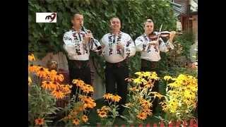 Fraţii Reuţ - O văzut mirele o floare 2012