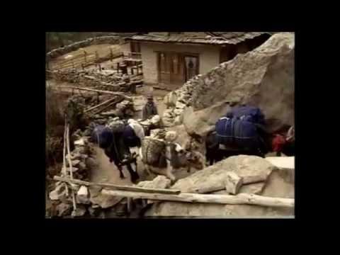 krishna cordial – 2