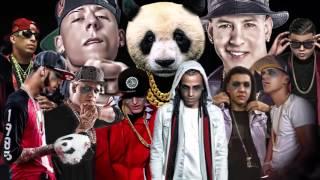 PANDA REMIX   Daddy Yankee, Cosculluela, Arcangel, Ñengo Flow, Farruko y mas width=