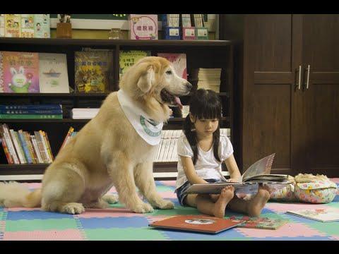 【福壽實業支持台灣狗醫生計劃】-2014台灣狗醫生微電影《公主與她的騎士》 - YouTube