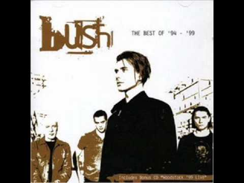 bush-out-of-this-world-carolinat294