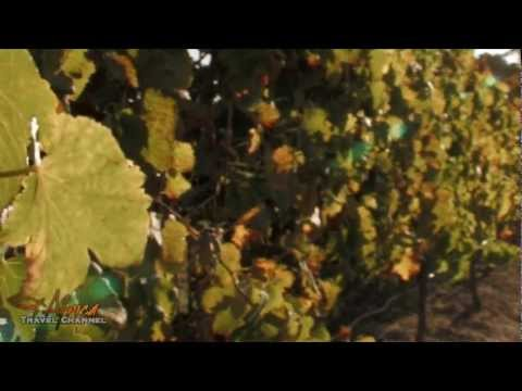 Rietvallei Wines Robertson Wine Valley South Africa – Africa Travel Channel