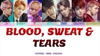 BTS - Blood Sweat & Tears Lyrics