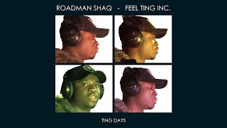 Roadman Shaq - Feel Ting Inc.