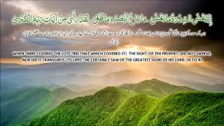Surah Najam By Saad Al Qureshi !
