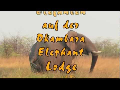 Namibia Okambara Elephant Lodge