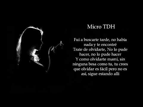 No Te Deje Sola de Micro Tdh Letra y Video
