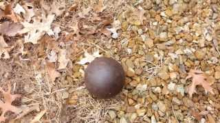 Mound City Auctions Auctioneer Finds Live Cannonball in St. Louis Home