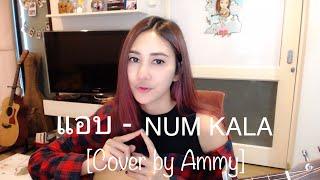 แอบ - NUM KALA [Cover By Ammy]