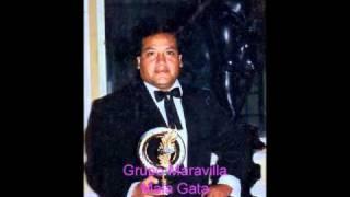 Mala Gata  - Grupo Maravilla de Jorge Chávez Malaver