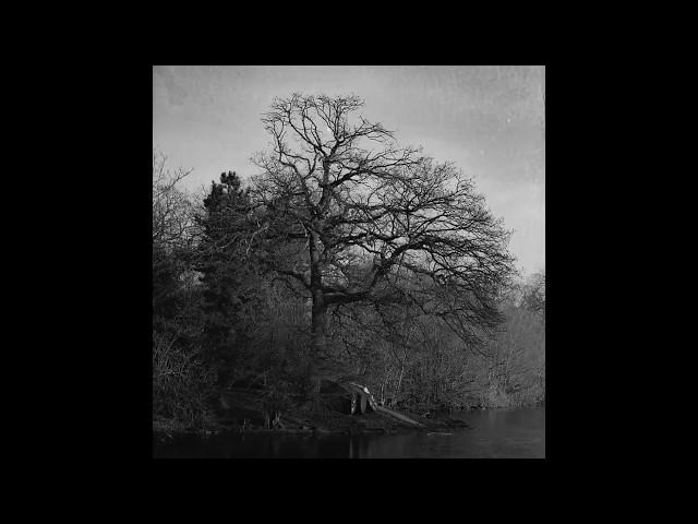 """Vídeo de """"Sol d'hivern"""" de Joe Pask (audio)"""