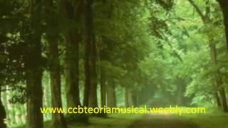 Hinos CCB - 98 - Violino, Flauta Doce e Violão