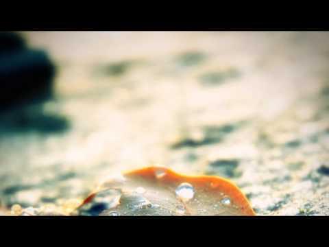 eddie-late-autumn-bob42jh