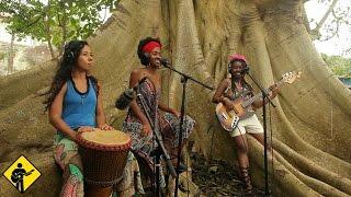 Dona Georgina | Playing For Change | Live Outside