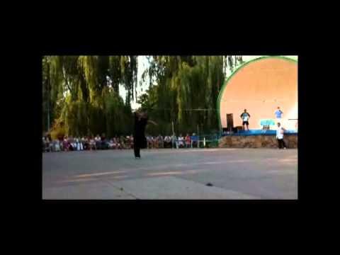 Ukraine Demo Wushu/Kung Fu 3
