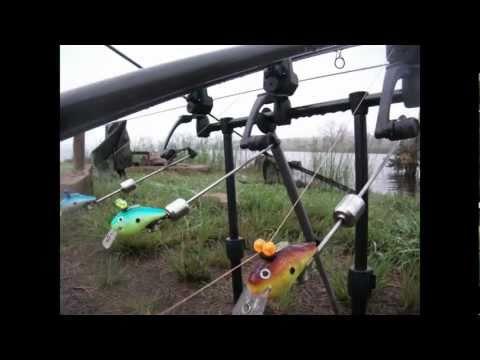 Carp Fishing South Africa