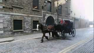 Horses on the cobblestones.