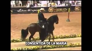 Imagen Del Encanto Hija De Prodigio de Maria Rosa F.C (VÍDEO)