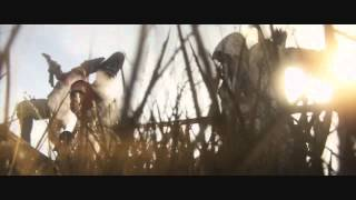 Assassin's Creed Montage - Zack Hemsey: See What I've become