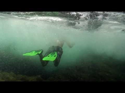 Schwarzes Meer -Tauchen an der Küste der Krim