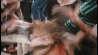 Behind the Scenes: Fireys - Labyrinth - The Jim Henson Company