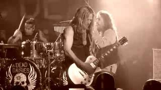 THE DEAD DAISIES - Make Some Noise (Live in Belfast)