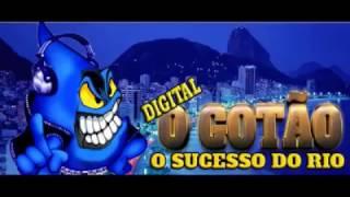O GOTÃO DIGITAL O SUCESSO DO RIO REALIZAÇÃO DJ SAMPLER 2017