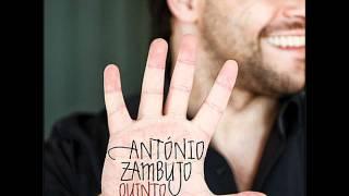 António Zambujo - Algo Estranho Acontece