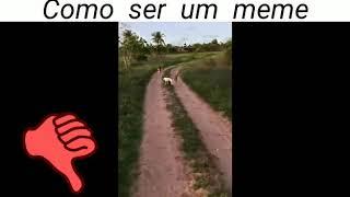 Meme Da Capivara