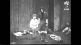 Video fuerte de los campos de concentración en la segunda guerra mundial