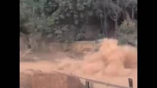 Ivete Sangalo, poeira poeiraaa