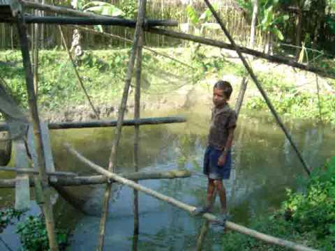 Traditional fishing Bangladesh