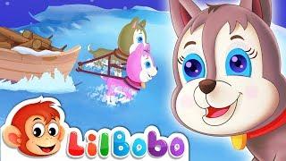 Bingo Song   Little BoBo Nursery Rhymes - FlickBox Kids Songs