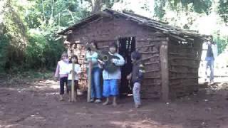 Música guaraní