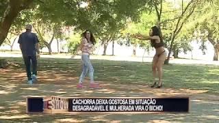 Cachorro arranca a saia da garota no parque e mulherada vira o bicho