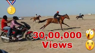 घोड़ो की रैस : Jamnagar horse race in dhichda