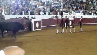 """Forcados Amadores do Montijo (Corrida de Soustons """"França""""  02-08-2012) - Fábio Siquenique"""