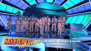 FINAL DE TENGO TALENTO MUCHO TALENTO 8 - LA ARROLLADORA BANDA EL LIMON