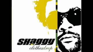REPENT- Shaggy