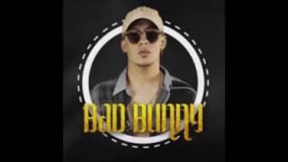 BAD BONNY