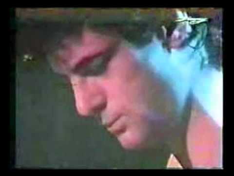 peter-hammill-shingle-song-lyrics-included-1975-musick2138