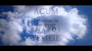 DMC - Nu ai idee (Lyrics VIDEO)