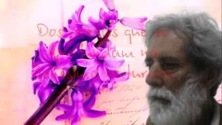 Poesia:  ESPELHO  ( Poeta:  Jorge pereira dos santos )