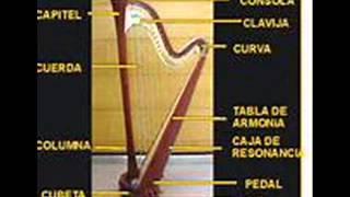Arpa de Gatica-La Zarpa