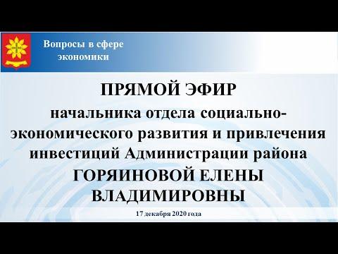 Прямой эфир нач. отдела социально-экономического развития и привлечения инвестиций Горяиновой Е.В.